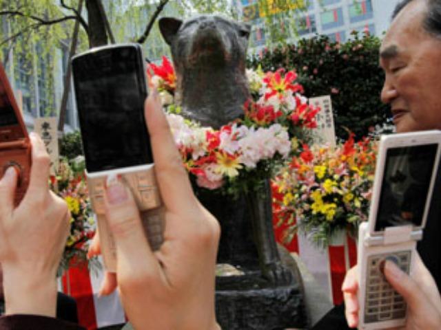 Hachiko-statue-cameras-AP