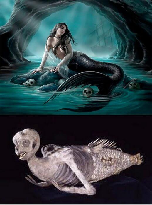 Sirena s Fidžija